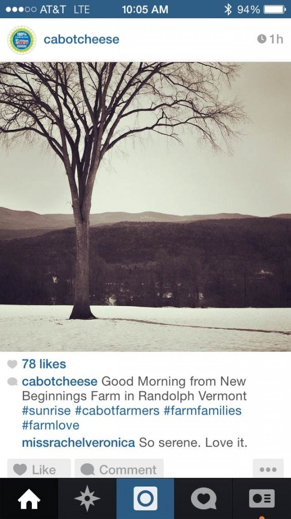 cabot-cheese-farm-landscape-instagram