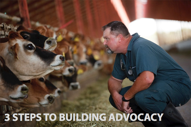 3-steps-to-building-advocacy