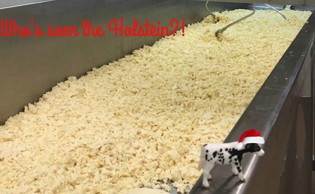vermont-farmstead-cheese