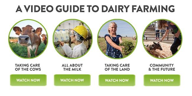 Dairy Good Video Tour